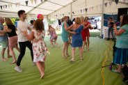 Beautiful garden Party with the Hessle Ceilidh Band-7